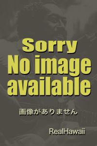 noime2012.jpg